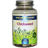 Nature's Herbs, Песчанка, 100 капсул