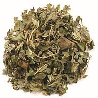 Frontier Natural Products, Органический нарезанный и просеянный лист лимонной мелиссы, 16 унций (453 г)