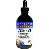 Planetary Herbals, Поддержка нижней части спины, 4 жидк. унц. (118,28 мл)