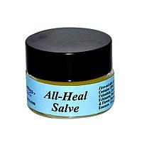 WiseWays Herbals, LLC, Мазь для исцеления всего 1/4 унции (7.1 г)