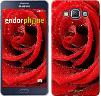 "Чехол на Samsung Galaxy A7 A700H Красная роза ""529c-117"""