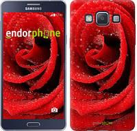 "Чехол на Samsung Galaxy A5 A500H Красная роза ""529c-73"""