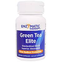 Enzymatic Therapy, Зеленый чай «Элитный», стандартизированный галлат эпигаллокатехина (EGCG), 60 растительных капсул