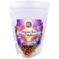 Earth Circle Organics, Сырые Органические Белые Тутовые Ягоды, 8 унций (226,7 г)