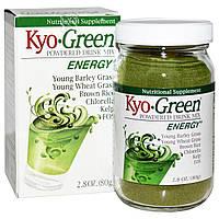 Wakunaga - Kyolic, Kyo-Green, сухая смесь для приготовления напитка, 2.8 унции (80 г)