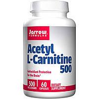 Jarrow Formulas, Ацетил L-карнитин, 500 мг, 60 капсул