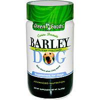 Green Foods Corporation, Ячмень для Собак 3 унции (85 г)