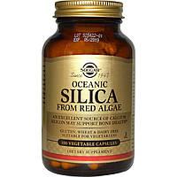 Solgar, Океанический оксид кремния из красных водорослей, 100 вегетарианских капсул