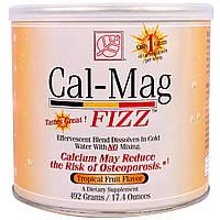 Baywood, Комплекс микроэлементов и витаминов Cal-Mag Fizz со вкусом тропических фруктов, 17,4 унций (492 г)