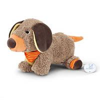 Мягкая музыкальная игрушка Sterntaler Собачка Dix (61230)