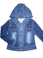 Джинсовая куртка для девочек, размеры 6,6,10,12,14,16 лет, Seagull, арт. CSQ-88685
