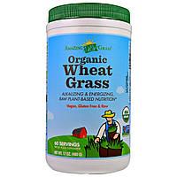Amazing Grass, Органические листья пшеницы, 480 г