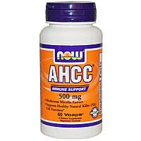 Now Foods, AHCC, Поддержание иммунитета, 500 мг, 60 вегетарианских капсул
