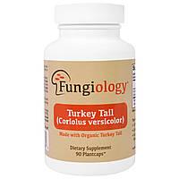 Fungiology, Траметес разноцветный полного спектра (Coriolus Versicolor), сертифицированный органический, поддержка клеток, 90 вегетарианских