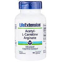 Life Extension, Ацетил-L-карнитина аргинат, 60 капсул в растительной оболочке