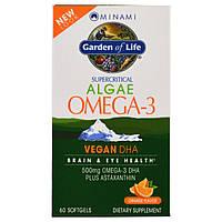 Minami Nutrition, VeganDHA, сверхкритическая добавка Омега-3, апельсиновый аромат, 60 мягких желатиновых капсул