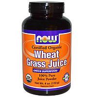 Now Foods, Organic, сок ростков пшеницы, 100 % чистый сок в порошке, 4 унции (113 г)