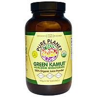 Pure Planet, Green Kamut c физалисом и ростками пшеницы, 90 г