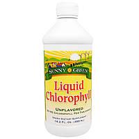 Sunny Green, Жидкий хлорофилл, неароматизированный, 100 мг, 16.2 жид.унции(480 мл)