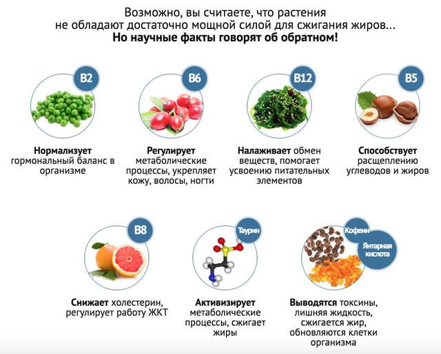 eco slim scade serbia am slabit cu dieta disociata