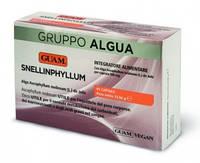 Пищевая добавка для специального диетического потребления SNELLINPHYLLUM