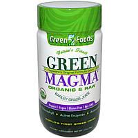 Green Foods Corporation, Зеленая магма, порошок из сока травы ячменя, 80 г