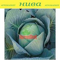 Альбатрос (Мерідор) F1 семена капусты белокачанной поздней Moravoseed 2 500 семян