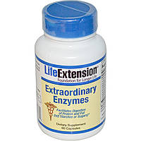 Life Extension, Дополнительные ферменты, 60 капсул