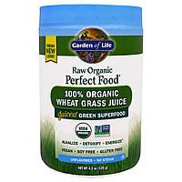 Garden of Life, Идеальная сырая органическая еда, 100% органический сок травы пшеницы, неприправленный, 120 г (4,2 унции)