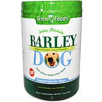Green Foods Corporation, Порошок из зеленых побегов ячменя для собак Barley Dog, 11 унций (312 г)