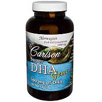 Carlson Labs, Рыбий жир «Сокровища супер-DHA», 500 мг, 180 мягких капсул