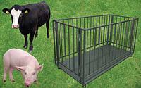 Весы для животных с клеткой  ВПД-С (500кг) 1000х1500х1000