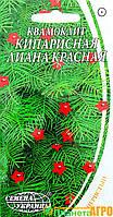 """Семена цветов Квамоклит """"Кипарисная лиана красная"""", однолетнее, 0.5 г, """"Семена Украины"""", Украина"""