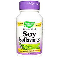 Nature's Way, Изофлавоны сои, стандартизированные, 60 растительных капсул