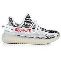 Мужские Adidas Yeezy Boost 350 V2 Zebra