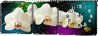 Часы-модульная картина 517 Белая Орхидея (49x137 см)