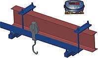 Монорельсовые весы Весоизмерительные системы 600ВП2, до 600 кг (800мм)