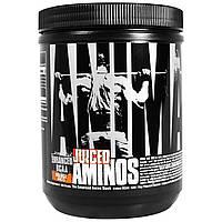 Universal Nutrition, Animal Juiced Aminos, усовершенствованные аминокислоты с разветвленной цепью, апельсин, 368 г