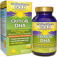 Renew Life, Norwegian Gold, Улучшенный рыбий жир, необходимый уровень ДГК, с натуральным апельсиновым вкусом, 60 жидких гелевых капсул, покрытых