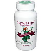 Vitanica, Slow Flow, препарат для приема во время менструального цикла, 60 капсул