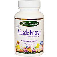 Paradise Herbs, Muscle Energy, с якорцами, 60 растительных капсул