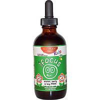 Bioray Inc., Kids, NDF Focus, с цитрусовым вкусом, 4 жидких унции (120 мл)