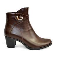 Кожаные женские демисезонные ботинки на невысоком каблуке, декорированы ремешком. Цвет коньяк