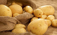 Спаситель картофеля 3в1, Агрохим