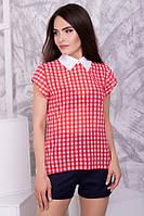 Шифоновая блуза в клетку S, M, L 2 цвета