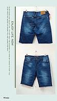 Мужские бриджи джинсовые оптом