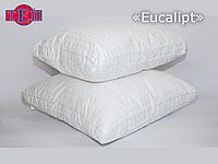 Подушка ТЕП «Eucalypt» 70х70
