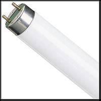 Philips Лампа ЛЛ 26 мм (люминисцентная стандартная) 18Вт TL-D 18/54 G13 холодная(КРАТНОСТЬ 25ШТ)