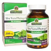 Natures Answer, Фитогель алое-вера, 250 мг, 90 растительных капсул