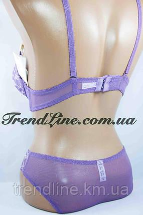 Комплект B Weiyesi № В428 Пуш-ап гель Фиолетовый, фото 2